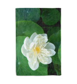 Kuscheldecke o. Fleecedecke Lotusblume weiss Blanket