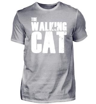 CAT | Katze