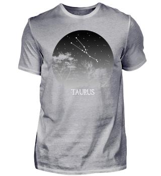 ★ Astrology Zodiac Taurus Stars 2