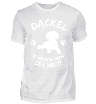 *DACKEL DER SCHÖNSTE HUND DER WELT*