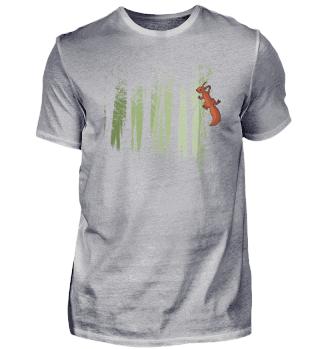Eichhörnchen im Wald | Squirrel Forest