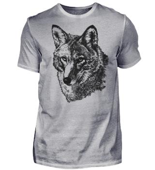Kojote Portrait Zeichnung schwarz weiß