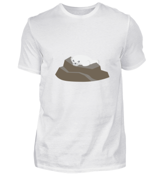 Kindermotiv: Seelöwe liegt auf Stein