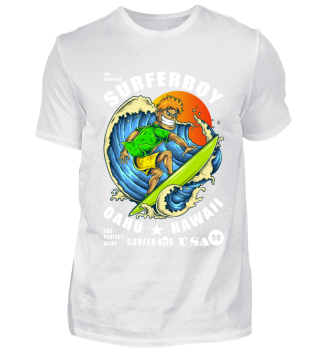 ☛ THE ORIGINAL SURFERBOY #1W
