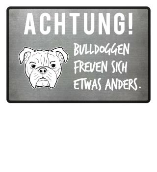 Bulldogge Fußmatte Lustige Sprüche