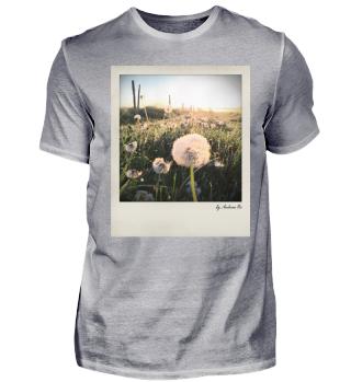 Dandelion | Pusteblume
