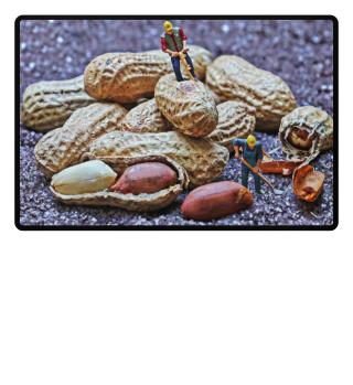 Fotomontage Miniatur Erdnuss Bauarbeiter