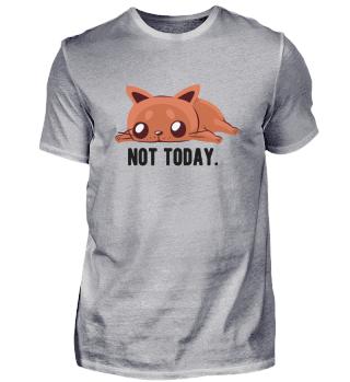 Cat Cats Kitten Not Today