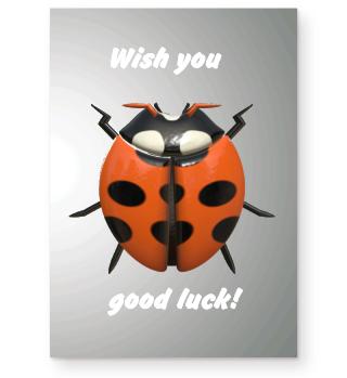 marienkäfer, glück, good luck, geschenk