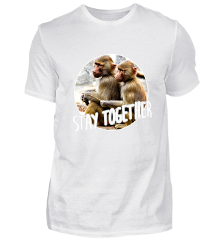 Stay Together - Two young baboons