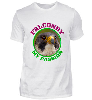 falconry my passion peregrine falcon