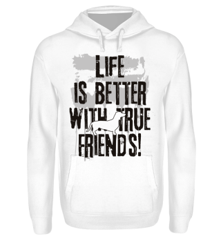 Life is better with true friends dackel1