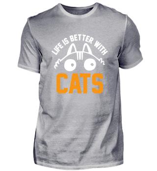 Katze Katze Katze