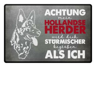 Stürmischer Hollandse Herder