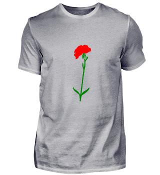 Rose Blume Geschenk Valentinstag