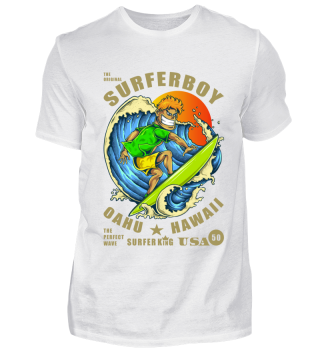 ☛ THE ORIGINAL SURFERBOY #1G