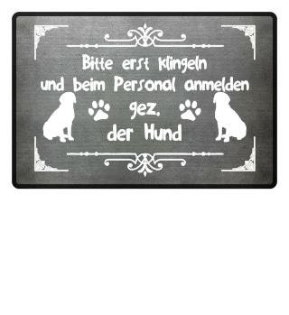 Hund: Bitte erst beim Personal melden - Geschenk