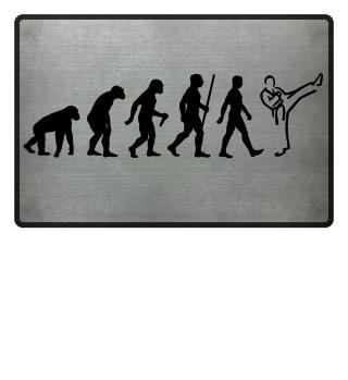 Evolution Of Humans - Martial Arts I