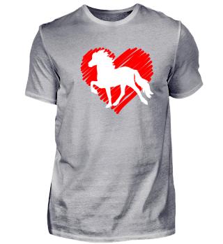 Isländer Islandpferd Pony