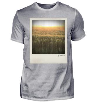 Feld Gegenlicht | Field in back light