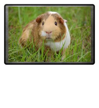 Meerschweinchen im Gras Fußmatte