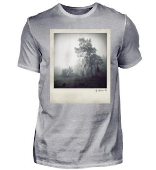 Fog and trees | Nebel mit Bäumen