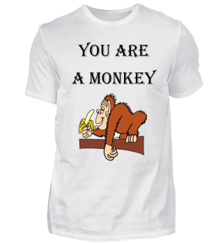 you are a monkey/Present for your monkey