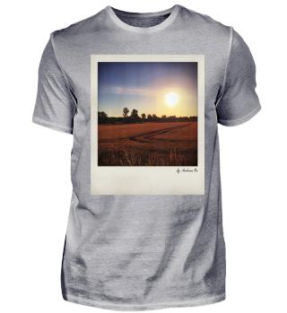 Feld im Sonnenaufgang |Field In Sunrise
