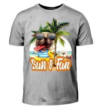 Sun und Fun 1.1.1