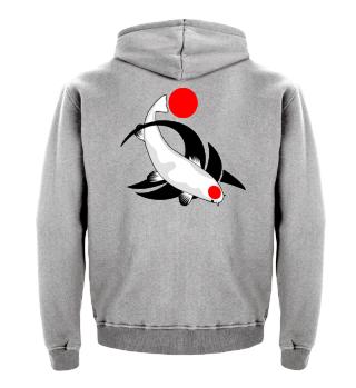 KOI Fish - Nishikigoi Tancho Kohaku 1