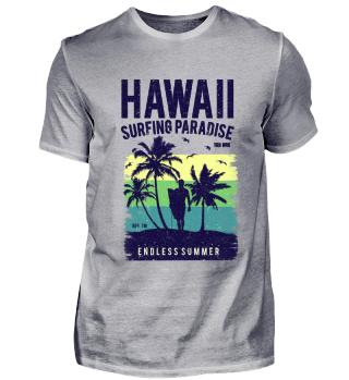 ☛ HAWAII #1.1