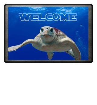 ♥ Photo - Wise Sea Turtle - Text