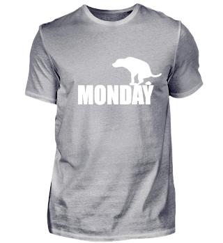 Monday Dog funny