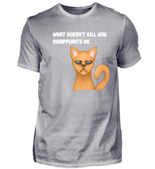 funny sayings cat pet