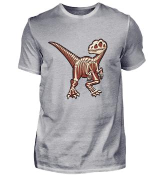 Urzeit Dino Velociraptor Skelett Raptor