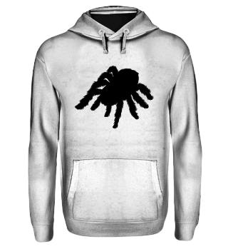☛ Spinne · Spider