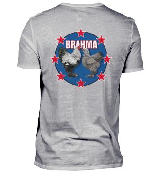 Brahma Dark Rücken/Backside Red Star