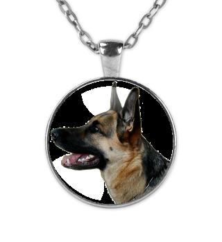 Kette Deutscher Schäferhund