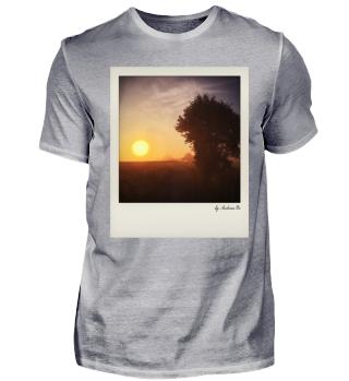 Baum mit Sonnenaufgang | Tree In Sunrise