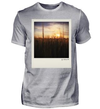 Feld im Sonnenaufgang | Field in sunrise