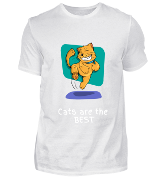 Cats are the best cat cat love kitten