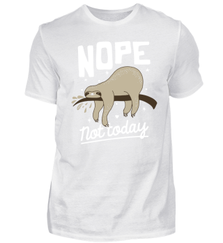 Lazy Sleeping Sloth Nope not today
