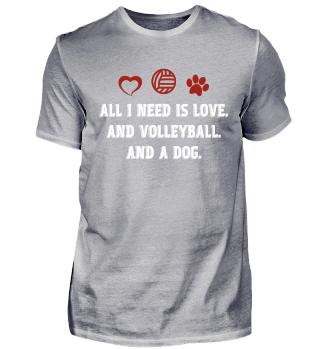 Volleyball, Volleyballplayer, gift