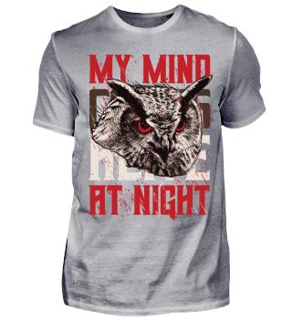 68 owl3 night