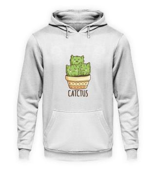 Catctus, cactus cats