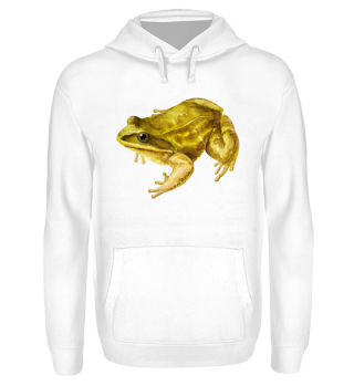 ☛ Frosch · Frog