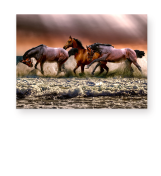 Galloping Horses At The Beach 1 LW