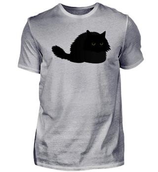 Cat persa