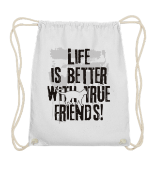 Life is better with true friends - Cat 1