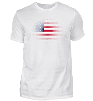 Heimatliebe heimat sonne schein flagge stolz USA Amerika